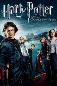 Harry Potter Và Chiếc Cốc Lửa - Harry Potter And The Goblet Of Fire
