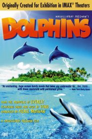 Top Chef Masters - Dolphins (2000)