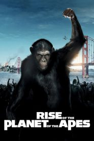 Sự Trỗi Dậy Của Hành Tinh Khỉ - Rise Of The Planet Of The Apes