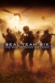 Biệt Đội Seal 6: Cuộc Đột Kích Osama Bin Laden - Seal Team Six: The Raid On Osama Bin Laden (2012)