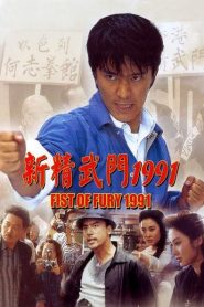 Fist of Fury 1991
