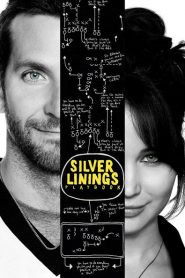 Silver Linings Playbook - Silver Linings Playbook (2012)