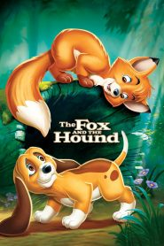 Cáo Và Chó Săn - The Fox And The Hound (1981)