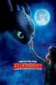 How to Train Your Dragon - How to Train Your Dragon (2010)