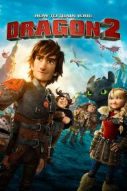 How to Train Your Dragon 2 - How to Train Your Dragon 2 (2014)