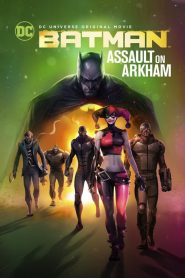 Batman: Assault on Arkham - Batman: Assault on Arkham (2014)