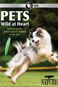 Pets: Wild at Heart Episode 1