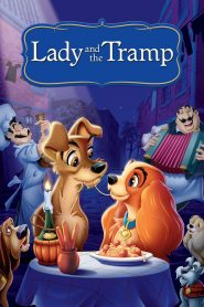 Lady and the Tramp - Lady and the Tramp (1955)