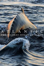 Atlantic: The Wildest Ocean on Earth