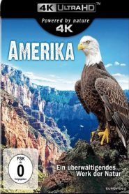 America – The Beautiful Country