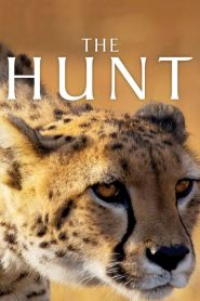The Hunt: Season 1