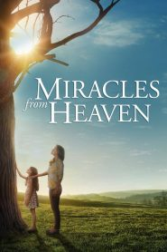 Miracles from Heaven - Miracles from Heaven (2016)