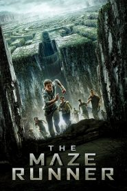 The Maze Runner - The Maze Runner (2014)