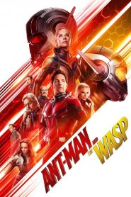 Ant-Man and the Wasp - Ant-Man and the Wasp (2018)