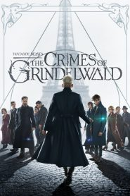Fantastic Beasts: The Crimes of Grindelwald - Fantastic Beasts: The Crimes of Grindelwald (2018)