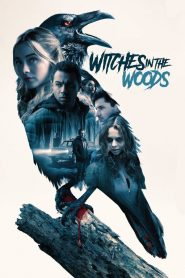 Phù Thủy Trong Rừng - Witches In The Woods (2019)