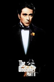 Bố Già 2 - The Godfather: Part Ii (1974)