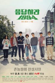 Reply 1994: Season 1