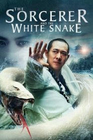 Thanh Xà Bạch Xà - The Sorcerer And The White Snake (2011)